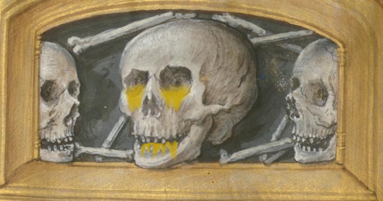 Skull Manuscript.png