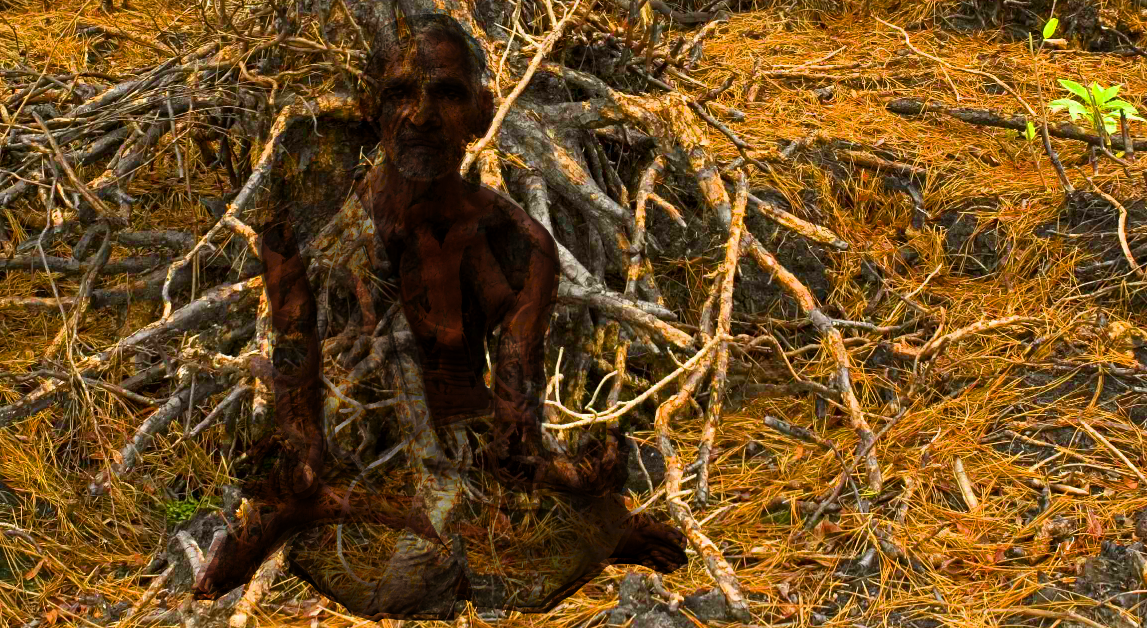 Man in the Roots.png