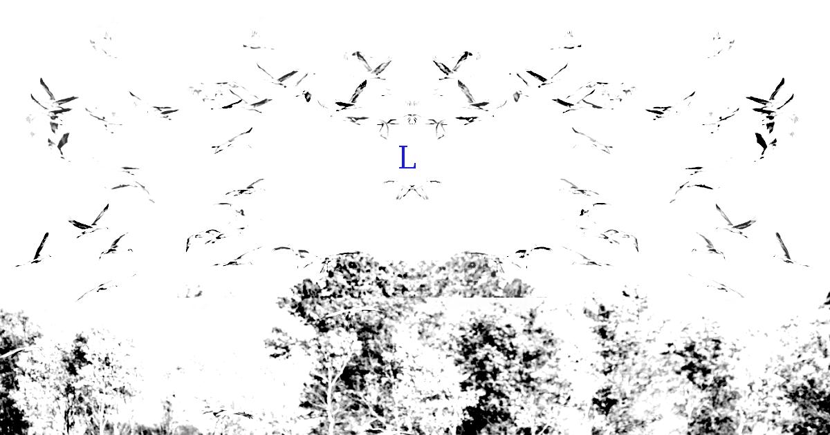 Last Swarm.png
